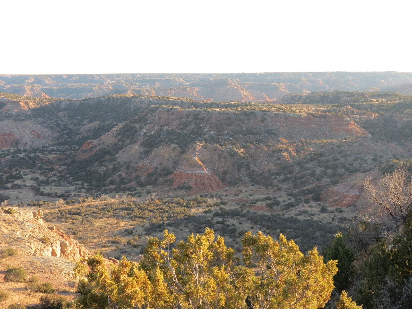 Dec 26, 2013  PM  Palo Duro Canyon, Amarillo TX