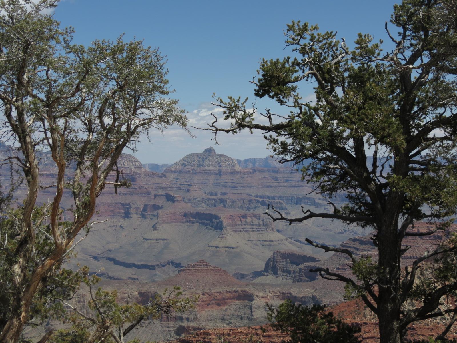 Grand Canyon Trip 2014 041