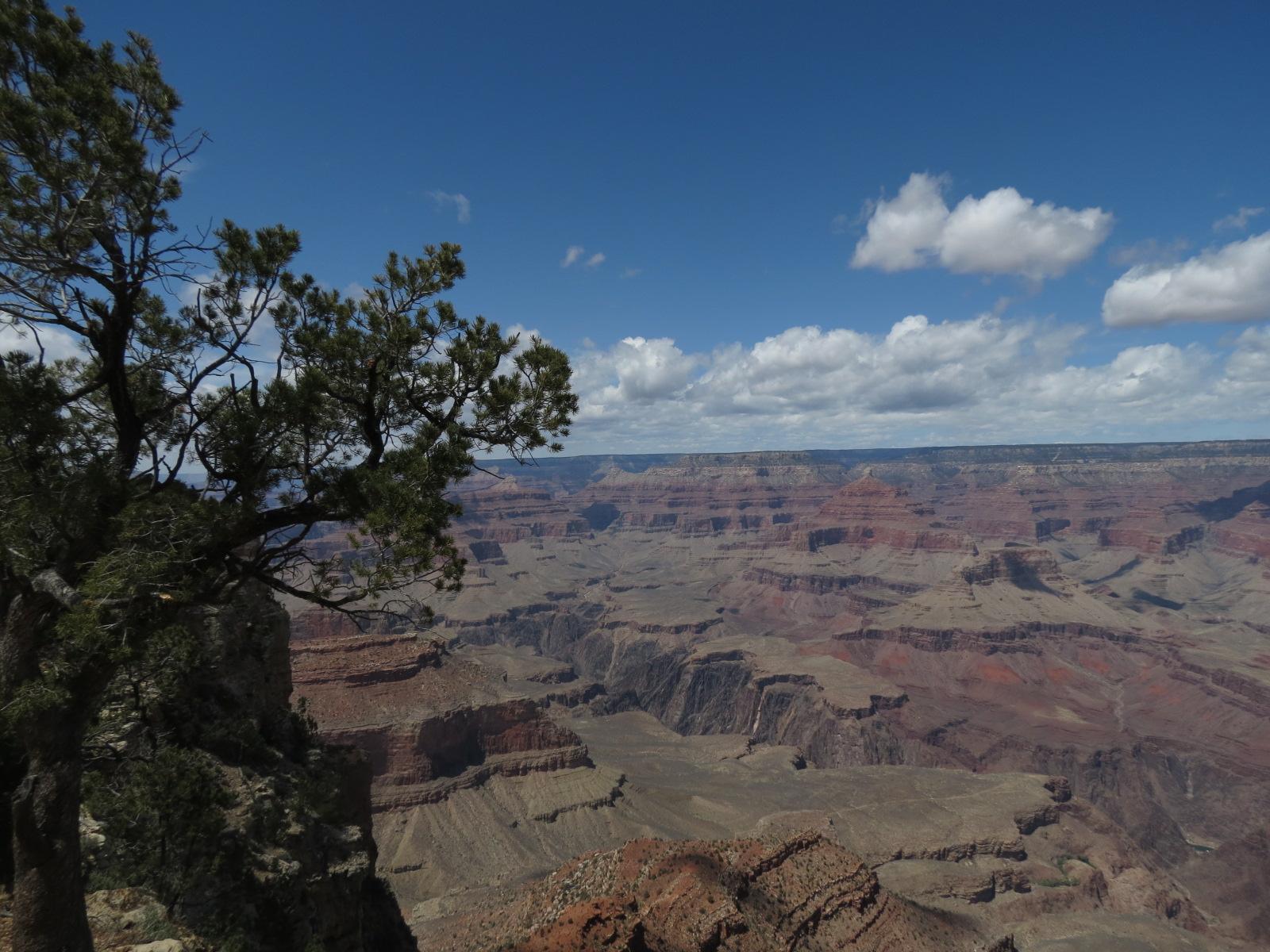 Grand Canyon Trip 2014 061