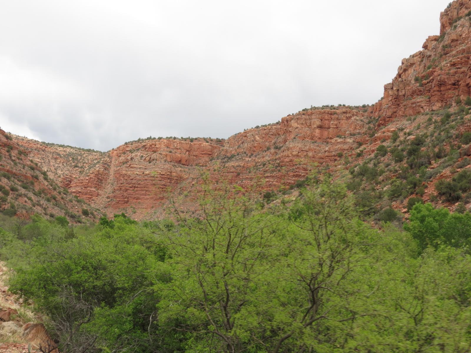 Verde Canyon Train 057