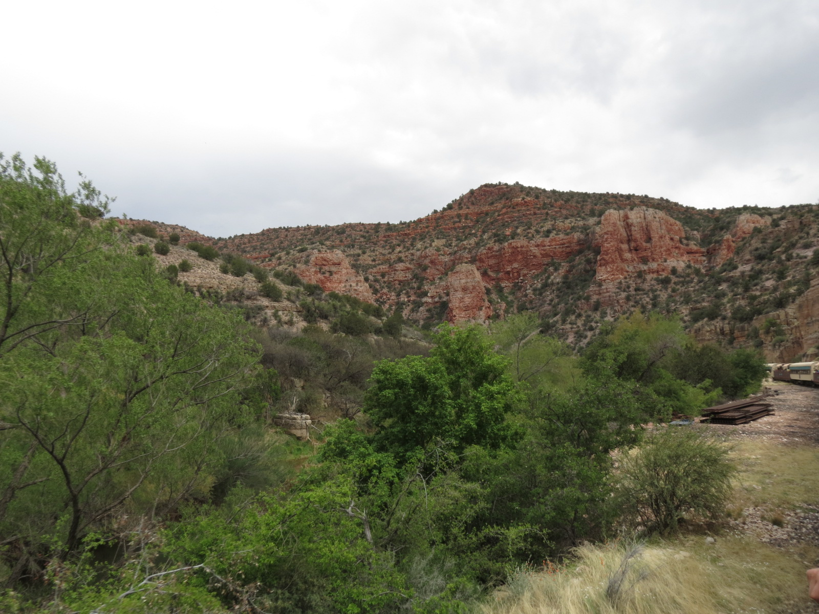 Verde Canyon Train 081