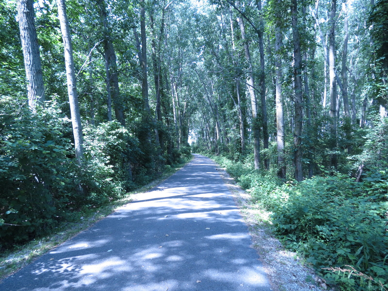 Bike trail in Maumee Bay State Park