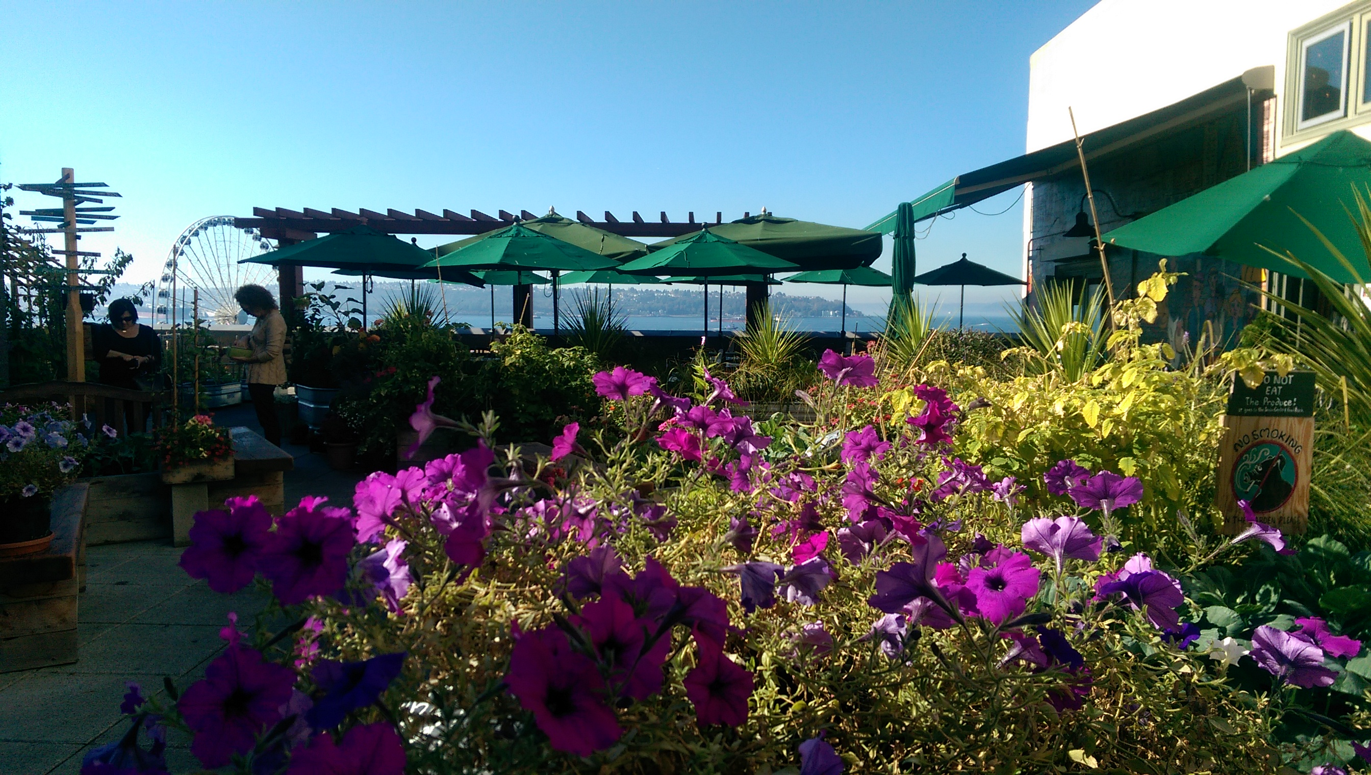 Rooftop Garden at Seattle's Marketplace